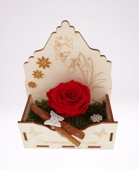 trandafir criogenat rosu, cutie din lemn, scortisoara, fluture alb din lemn
