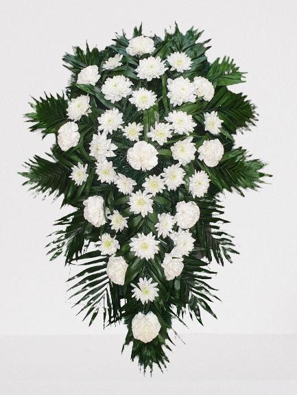garoafe albe, crizanteme albe