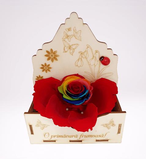 cutie de lemn cu mesaj: O primavara frumoasa!, trandafir criogenat rainbow, petale de trandafir criogenat rosii