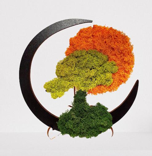 tablou din lemn, model bonsai, licheni stabilizati: verde si portocaliu