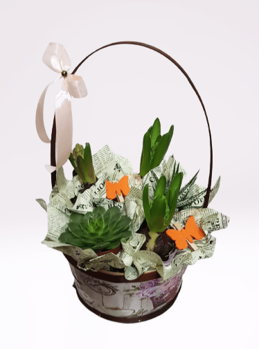 cos cu toarta, zambile, planta suculenta, fluturo